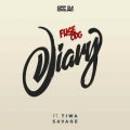 Fuse ODG – Diary Lyrics (ft. Tiwa Savage)