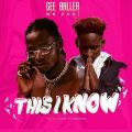 Gee Baller - This I Know Lyrics (ft. Mr EaZi)